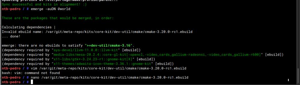 cmake.ebuild error.png
